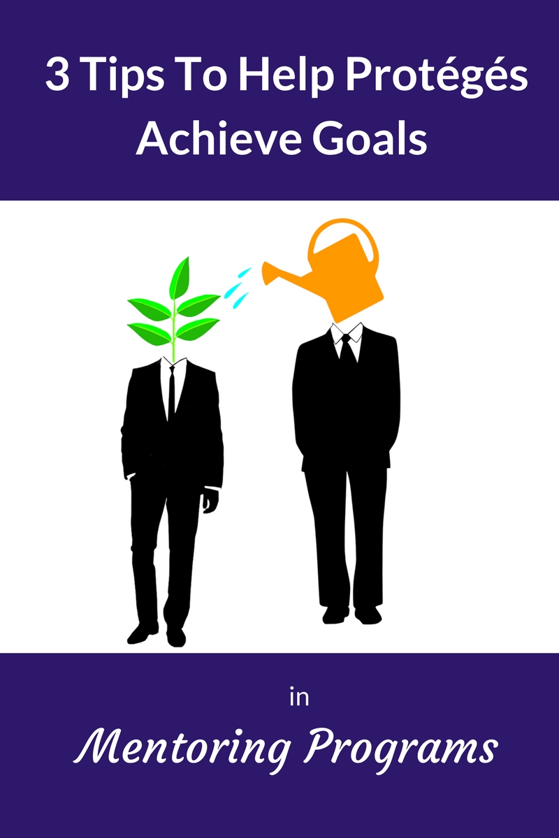 goals in mentoring programs